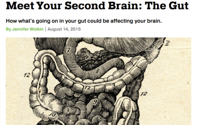 Repost: Meet Your Second Brain: The Gut